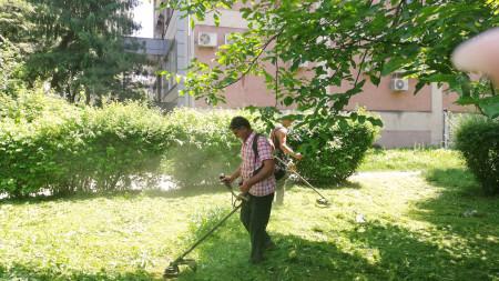 A zöldterületeket karbantartó cégek csapatai a város több pontján nyírják a füvet